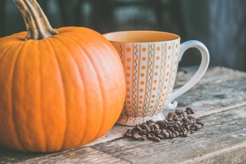 Pumpkin Protein Smoothie Recipe